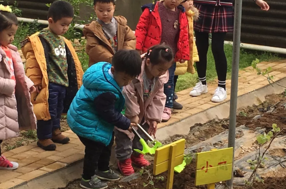 幼儿园大班植树节报道 2019幼儿园植树节活动报道