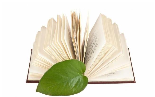 幼儿园植树节活动主题策划方案2019 幼儿园植树节活动主题策划方案三篇