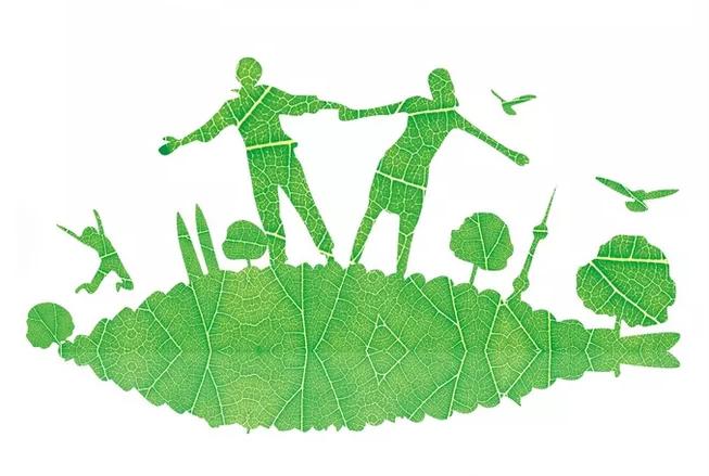 3.12幼儿园植树节活动新闻报道 关于幼儿园植树节新闻报道2019
