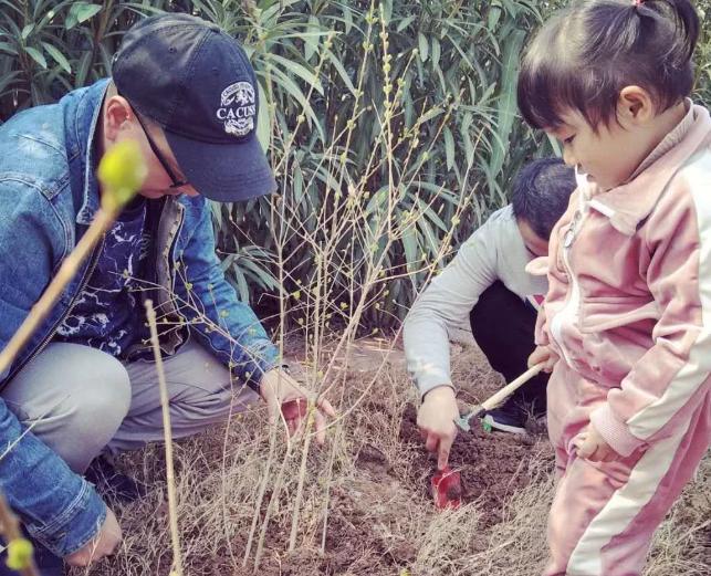 幼儿园小班植树节爆料 2019幼儿园植树节流动爆料