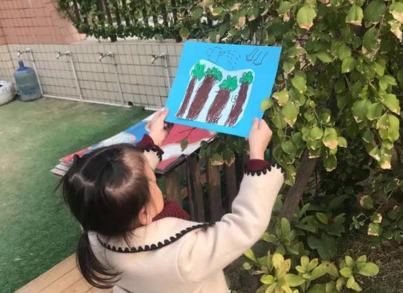 幼儿园中班植树节报道 2019幼儿园植树节活动报道