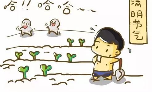 2019幼儿园清明节小故事教案 关于清明节的小故事