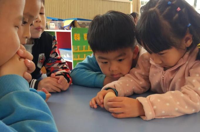 幼儿园中班春分竖蛋活动方案 幼儿园春分竖蛋活动内容