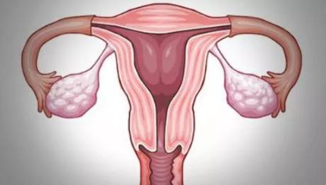 只剩一侧输卵管怎么备孕 输卵管治疗后多久能怀孕