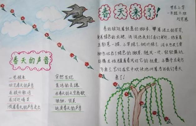 小学春分手抄报图片 二十四节气春分手抄报内容