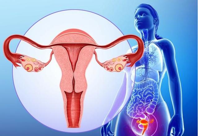 卵巢早衰做B超可以看出来吗 卵巢早衰就代表不能生育了吗