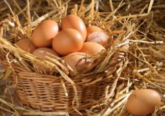 土鸡蛋真的有营养吗 看完315晚会你还买土鸡蛋吗