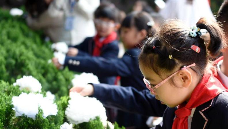 小学清明节活动方案2019 小学清明节主题活动策划方案