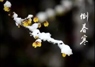 2019倒春寒是什么时候 倒春寒该怎么预防