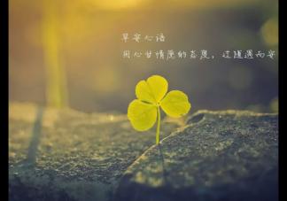 今日春分早安朋友圈文字配图说说  春分早安流行经典说说