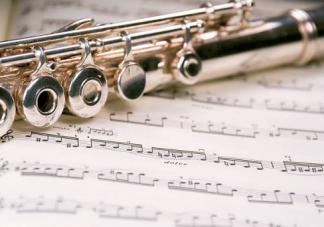 适合胎儿早教的音乐推荐 有利于胎儿智力发育的音乐