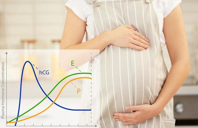 [孕妇孕酮和hcg正常值]孕妇孕酮和hcg的正常范围是多少 β-hcg是如何翻倍