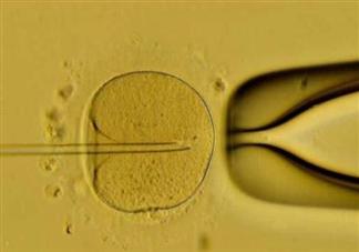 试管婴儿中哪个步骤最困难 试管婴儿的具体过程
