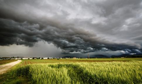 谷雨的由来简介30字_谷雨的由来 谷雨季节怎么养生
