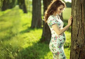 孕妇照多少周拍比较好 孕妇照拍摄注意事项