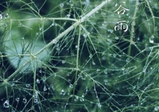 谷雨节气的诗词有哪些 关于谷雨的古诗大全