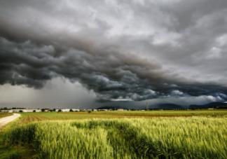 谷雨的由来 谷雨季节怎么养生