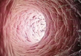 输卵管介入疏通后会再次阻塞吗 输卵管介入成功率高吗