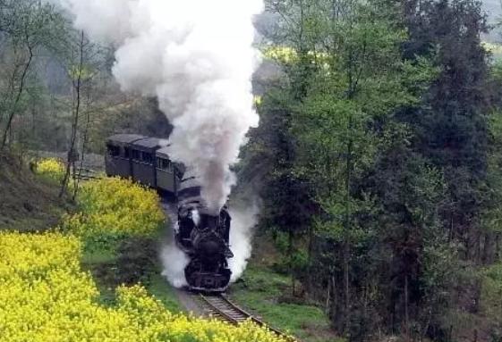 孕妇梦见坐火车好不好 孕妇梦见坐火车生男生女