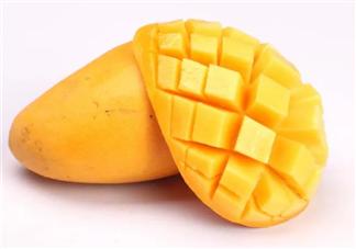孩子吃芒果会得皮炎吗 孩子患了芒果皮炎怎么办