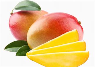 孩子多大可以吃芒果 孩子吃芒果要注意什么