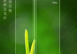 谷雨文案海报合集2019 谷雨品牌创意文案
