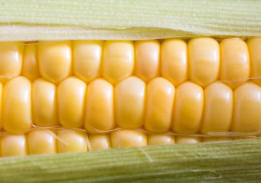 [宝宝玉米粥的做法大全]宝宝玉米食谱大全2019 玉米辅食制作方法步骤