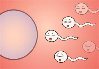 精液常规检查主要有哪些项目 怎么知道精子是否健康