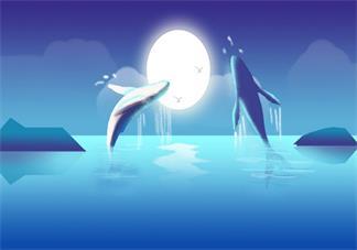 学龄前宝宝睡前故事 我的心里住了一只蓝鲸