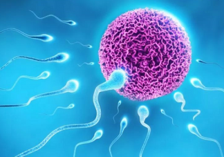 男性禁欲真的能提高精子质量吗 长期禁欲对男性的影响有哪些