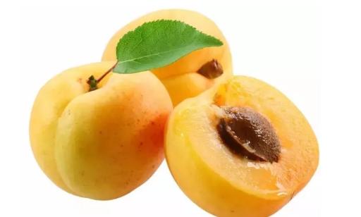 哺乳期吃杏子对宝宝有影响吗 哺乳期能吃杏子吗