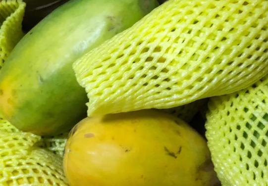 哺乳期青木瓜怎么吃下奶 哺乳期吃青木瓜好处