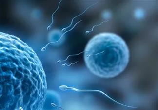 男性长期没有性生活会怎么样 男性长期不排精对身体有什么伤害