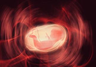 通过孕囊可以推测怀孕时间吗 孕囊计算预产期准吗