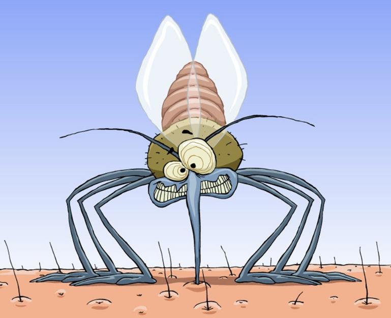 用甚么防止蚊虫叮咬孩子比较好 蚊虫多怎么避免被咬