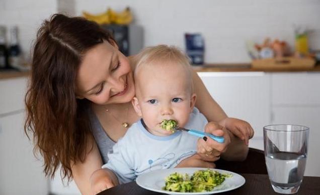 咀嚼能力对智力影响_咀嚼能力对孩子的影响 怎么锻炼宝宝的咀嚼能力