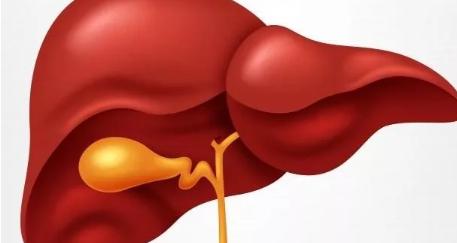 有乙肝怀孕要注意什么 有乙肝怀孕了会传染宝宝吗