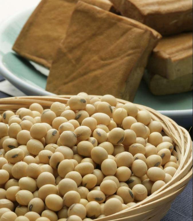吃豆制品会影响怀孕成功概率吗 备孕期间能不能吃豆制品