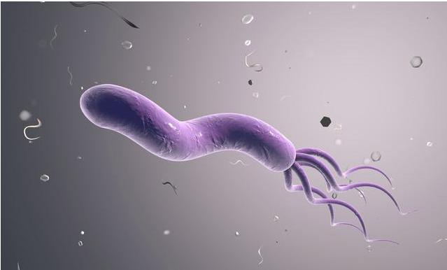 宝宝感染幽门螺旋杆菌有哪些症状 怎么预防幽门螺旋杆菌