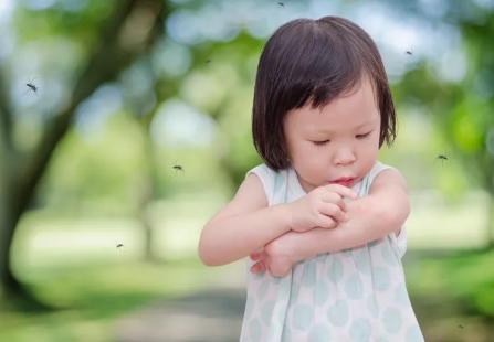 派卡瑞丁对猫有毒吗_派卡瑞丁对婴儿有害吗 多大的宝宝可以用派卡瑞丁驱蚊