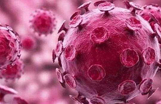备孕检查HPV有必要吗 备孕检查HPV感染怎么办