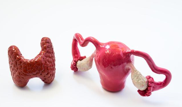 切除子宫会有什么后遗症 哪些疾病可能会切除子宫
