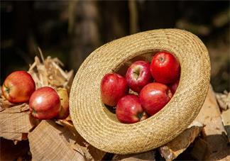 怀孕吃哪些水果对宝宝好 准妈妈吃什么水果有助于胎儿成长