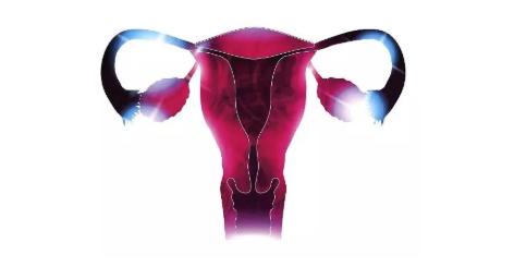 子宫内膜炎有哪些症状 子宫内膜炎怎么预防