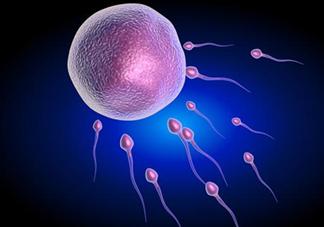 排卵期出血是怎么回事 排卵期出血会影响怀孕吗