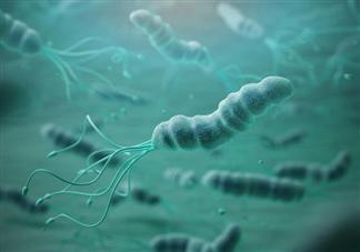 要不要带孩子做幽门螺杆菌检测 感染了幽门螺杆菌的孩子需要治疗吗
