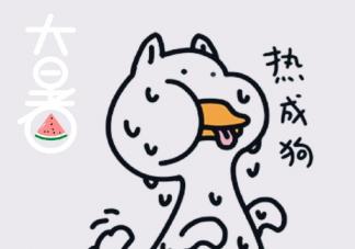 热成狗的说说2019 夏天热成狗的说说配图