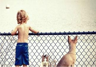 3到6岁的宝宝情绪如何处理 如何正确处理宝宝情绪