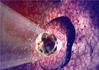 排卵期小腹胀痛是正常的吗 排卵期有效受孕时间是几天