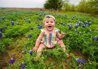 不同年龄段宝宝吃什么辅食 各月龄辅食营养建议